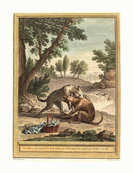 Chien Drawing - Martin Marvie After Jean Baptiste Oudry French by English School