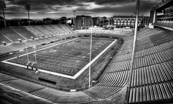 Photograph - Martin Stadium - Pullman Washington by David Patterson