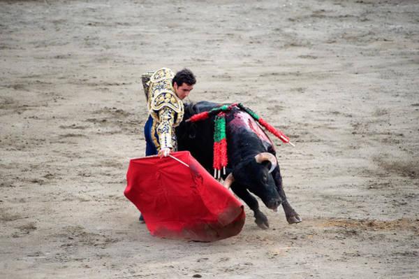 Matador Wall Art - Photograph - Matador And A Bull In A Bullring, Lima by Panoramic Images