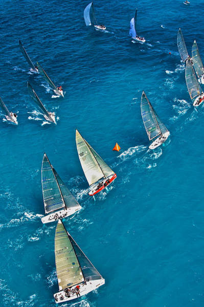Photograph - Miami Regatta Aerial by Steven Lapkin