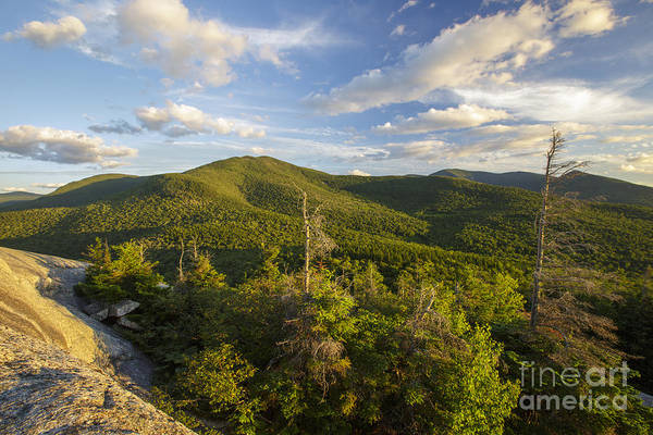 Photograph - Middle Sugarloaf Mountain - Bethlehem Nh Usa by Erin Paul Donovan