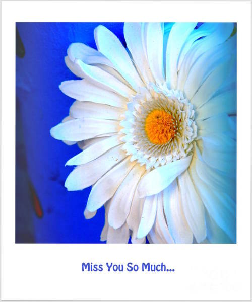 Photograph - Miss You So Much... by Susanne Van Hulst