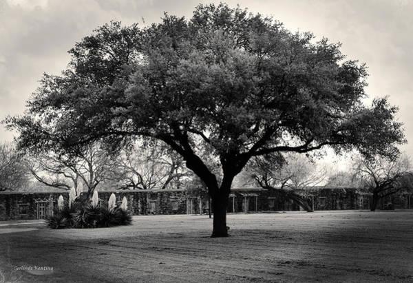 Photograph - Mission San Jose In San Antonio Texas by Gerlinde Keating - Galleria GK Keating Associates Inc