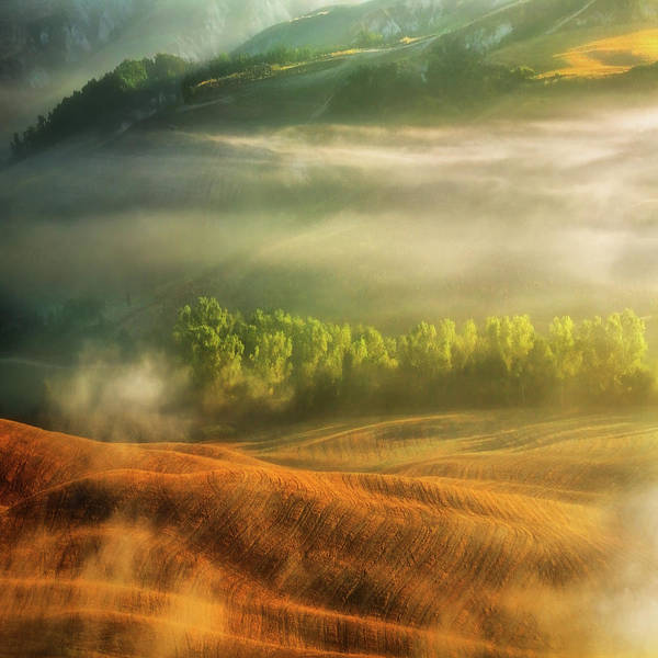 Dreamy Photograph - Mist... by Krzysztof Browko