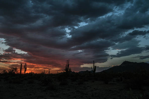 Photograph - Monsoon Sunset by Tam Ryan