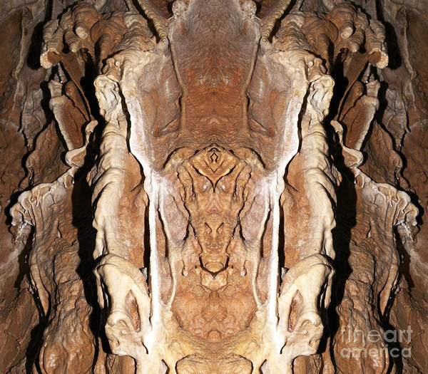 Wall Art - Photograph - Monster by Michal Boubin