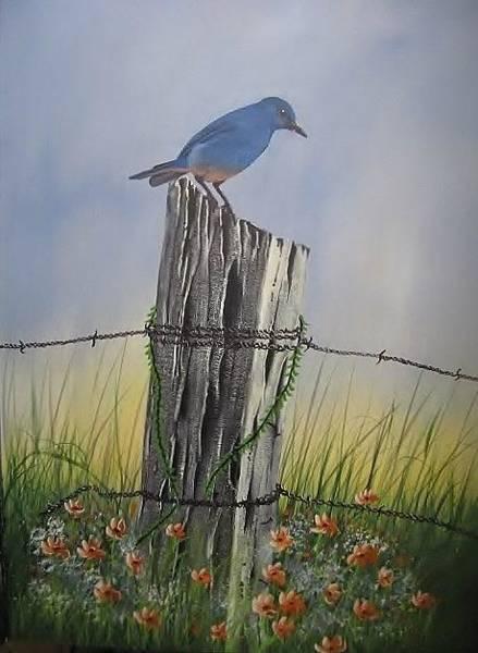 Painting - Mountain Bluebird by Lorraine Bradford