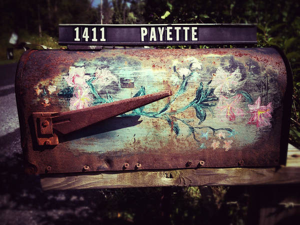 Photograph - Mountain Mailbox by Natasha Marco