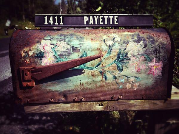 Catskills Photograph - Mountain Mailbox by Natasha Marco