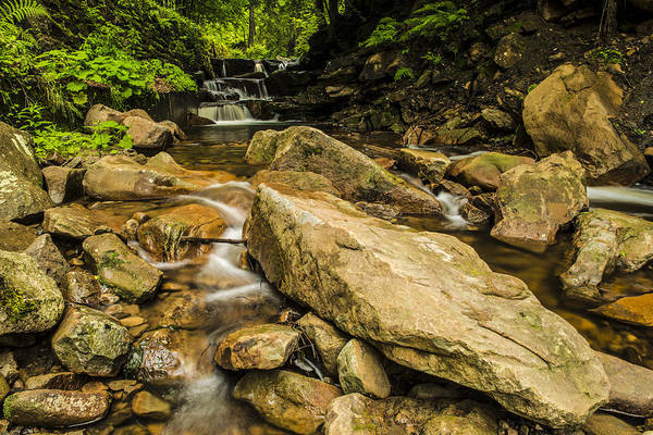 Wall Art - Photograph - Mountain Stream by Jaroslaw Grudzinski