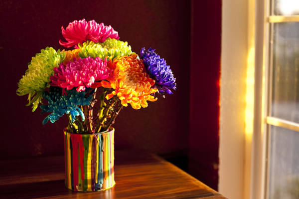 Chest Of Drawers Photograph - Multicolored Chrysanthemums In Paint Can by Jim Corwin