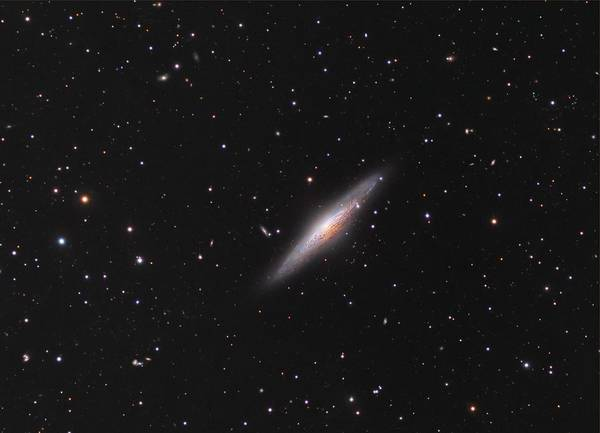 Endless Painting - Ngc 2683 Spiral Galaxy by Celestial Images