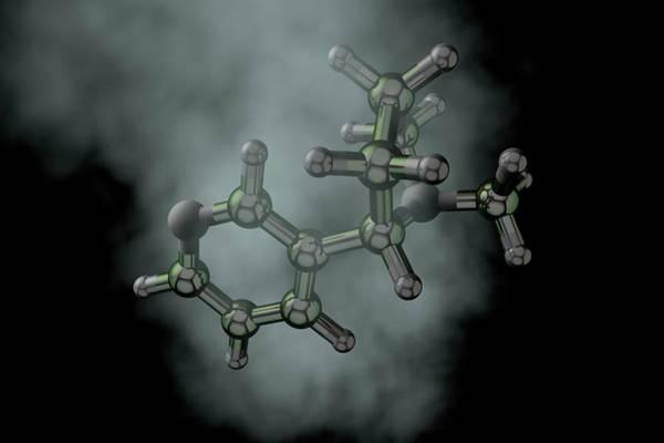 Wall Art - Photograph - Nicotine Molecule by Ella Maru Studio / Science Photo Library