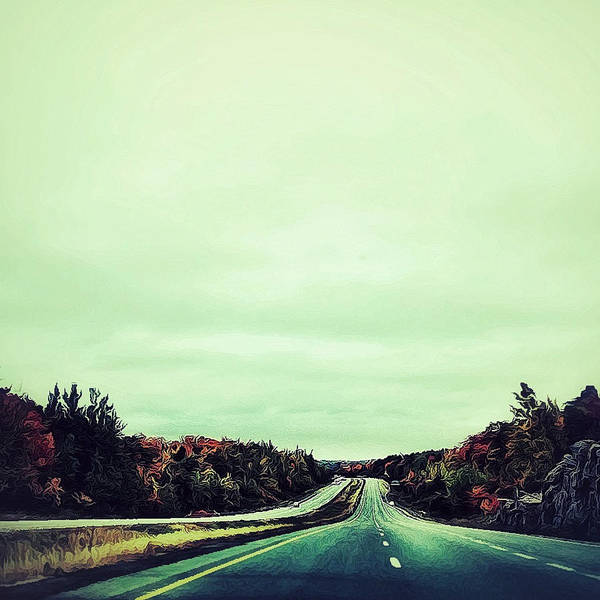 Photograph - Northbound by Natasha Marco