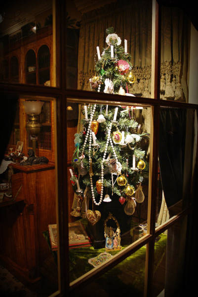 Photograph - O Christmas Tree by Marilyn Wilson