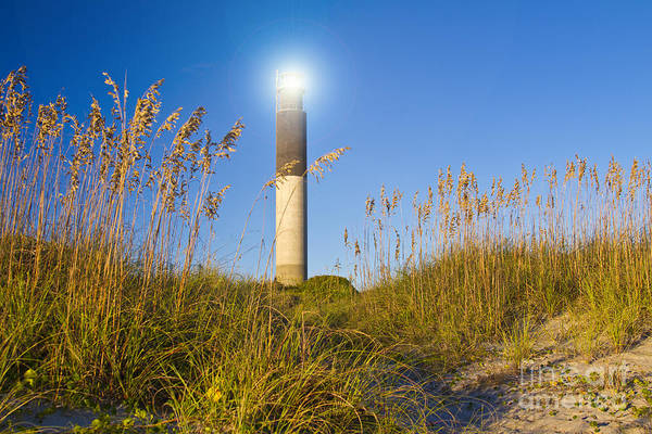 Wall Art - Photograph - Oak Island Southport North Carolina Lighthouse Through The Cassw by ELITE IMAGE photography By Chad McDermott