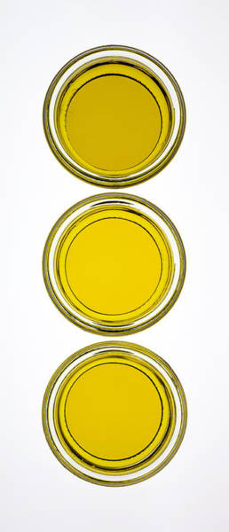 Olives Photograph - Olive Oil by Frank Tschakert