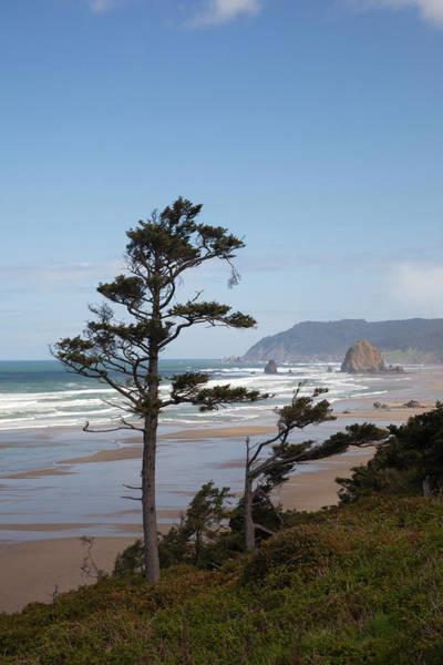 Cannon Beach Photograph - Or, Oregon Coast, Cannon Beach by Jamie and Judy Wild