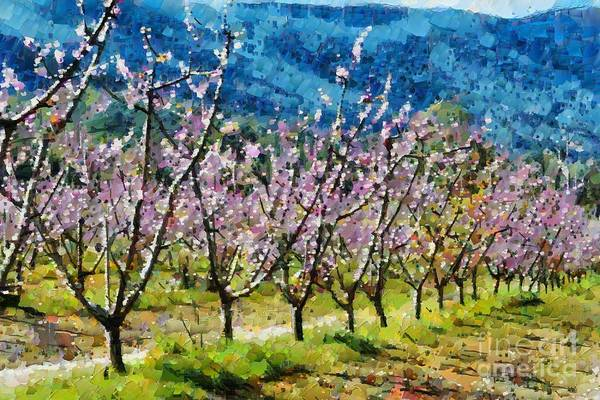 Digital Art - Orchard View by Fran Woods