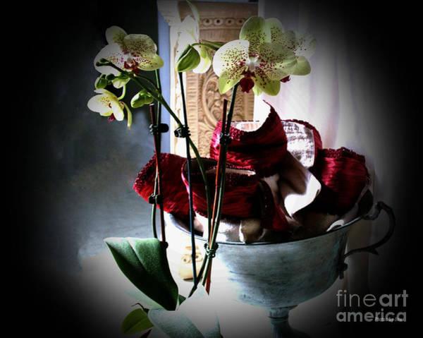 Orchids Art Print by Jinx Farmer