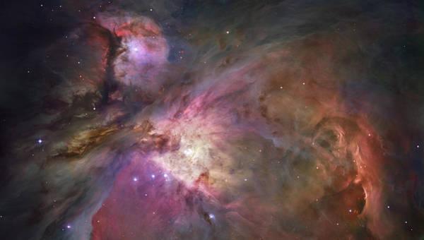 Photograph - Orion Nebula by Sebastian Musial