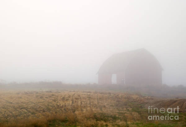 Wall Art - Photograph - Out Of The Fog by Mike  Dawson