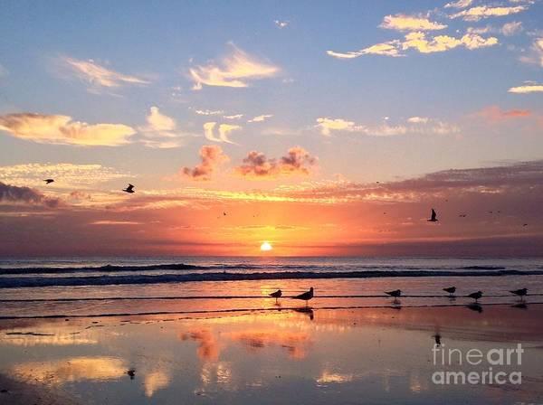 Photograph - Painted Sky by LeeAnn Kendall