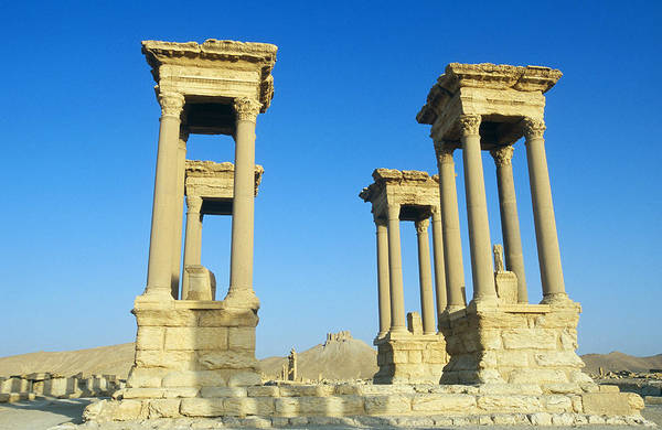 Wall Art - Photograph - Palmyra, Syria by Alison Wright