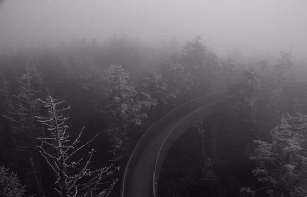 Unknown Photograph - Path To The Unknown by Dan Sproul