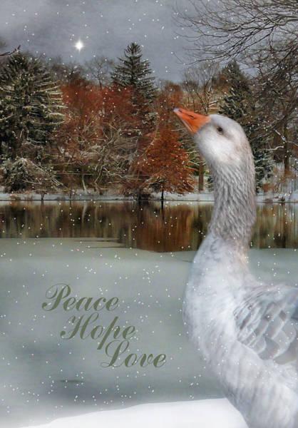 Photograph - Peace Hope Love by Robin-Lee Vieira