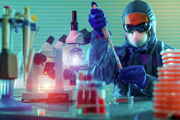 Technician Photograph - Person Working In Microbiology Lab by Wladimir Bulgar/science Photo Library
