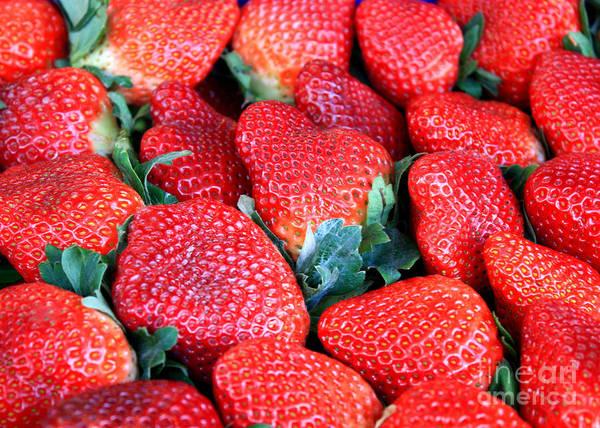 Photograph - Plant City Strawberries by Carol Groenen