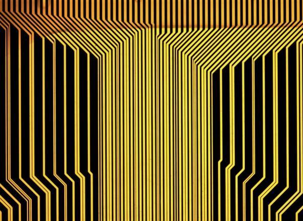 Wall Art - Photograph - Printed Circuit by Alfred Pasieka