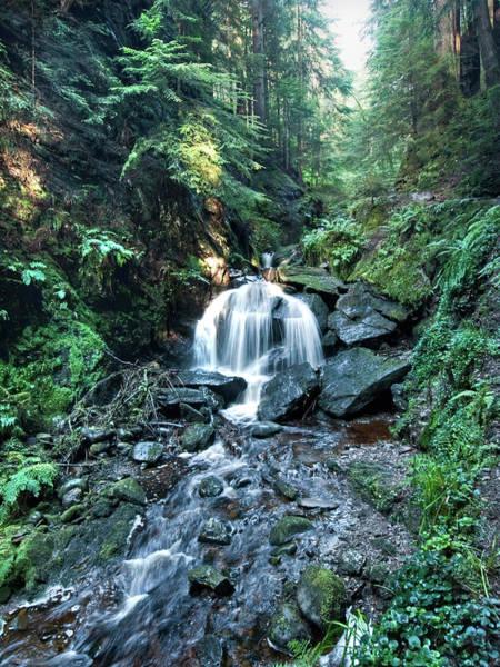 Photograph - Puck's Glen Falls by Gary Eason