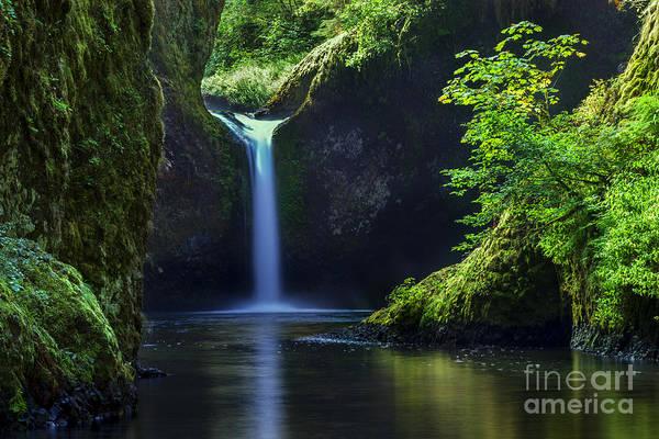 Wall Art - Photograph - Punchbowl Falls by Brian Jannsen