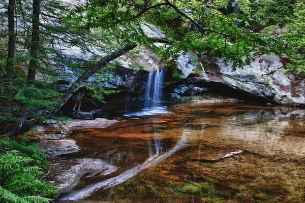 Photograph - Quiet Solitude by Jeff Folger