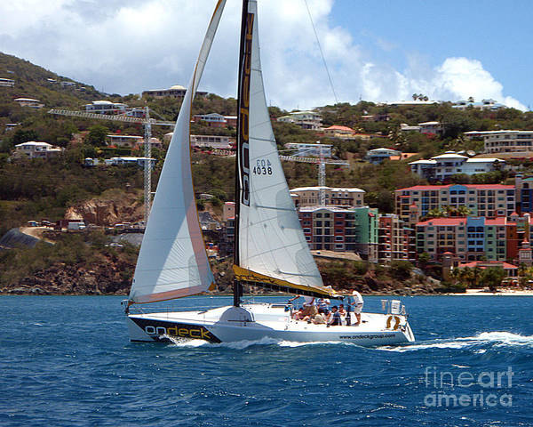 Photograph - Racing At St. Thomas 1 by Tom Doud