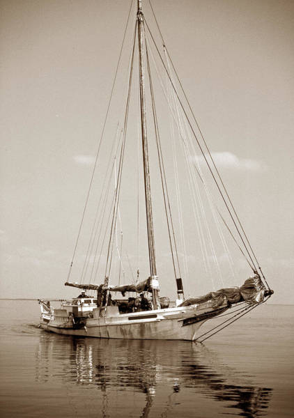 Sailing Terms Photograph - Rebecca T Ruark by Skip Willits