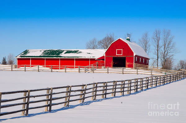 Photograph - Red Barn by Les Palenik