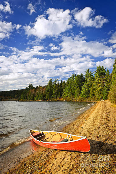 Algonquin Photograph - Red Canoe On Lake Shore by Elena Elisseeva