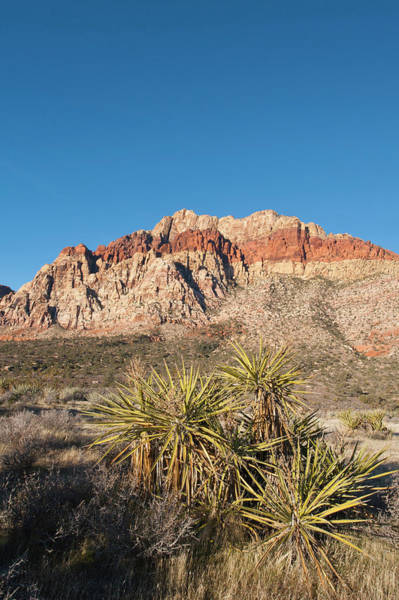 Ie Wall Art - Photograph - Red Rock Canyon Outside Las Vegas by Michael Defreitas
