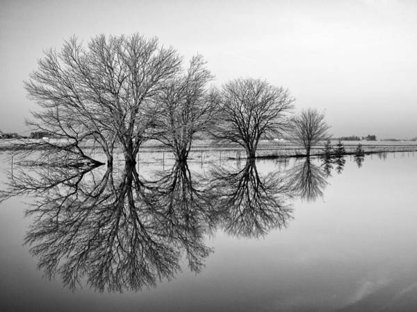 Aesthetic Photograph - Reflection by Tom Druin
