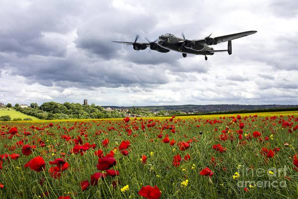 Poppies Digital Art - Remember by J Biggadike