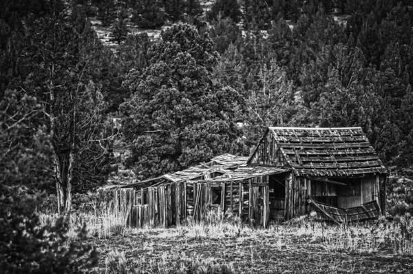 Photograph - Retired by Sherri Meyer