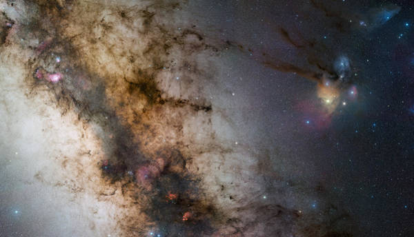 Photograph - Rho Ophiuchi by Celestial Images