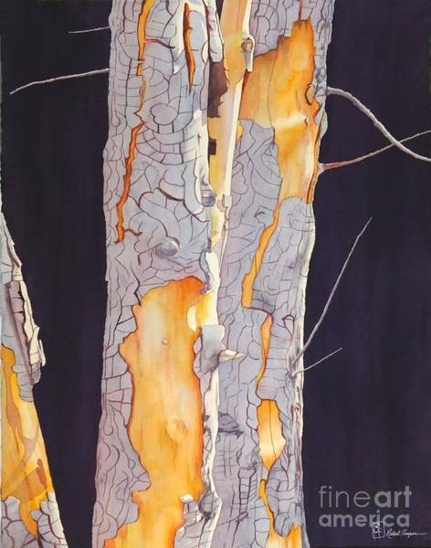 Wall Art - Painting - River Birch At Lynx by Robert Hooper