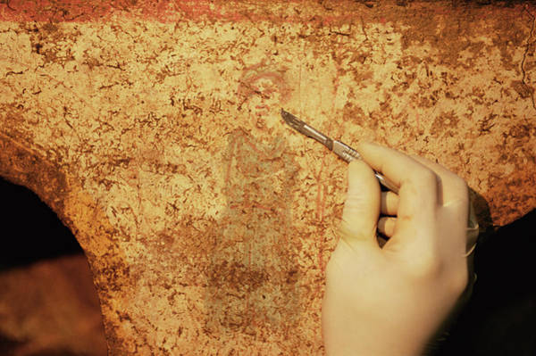 Roman Wall Photograph - Roman Fresco by Pasquale Sorrentino/science Photo Library