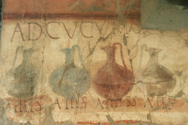 Wall Art - Photograph - Roman Frescoes by Pasquale Sorrentino/science Photo Library