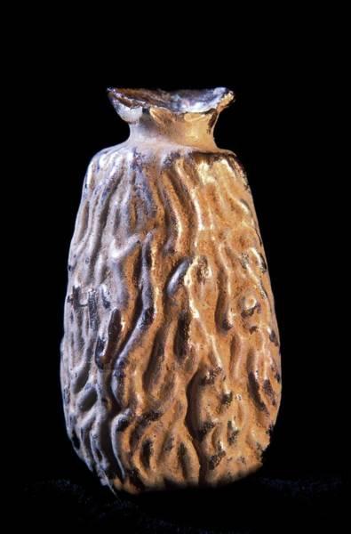 Perfume Photograph - Roman Perfume Bottle by Patrick Landmann/science Photo Library