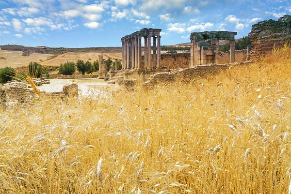 Wall Art - Photograph - Roman Ruins, Temple Of Juno Caelestis by Nico Tondini